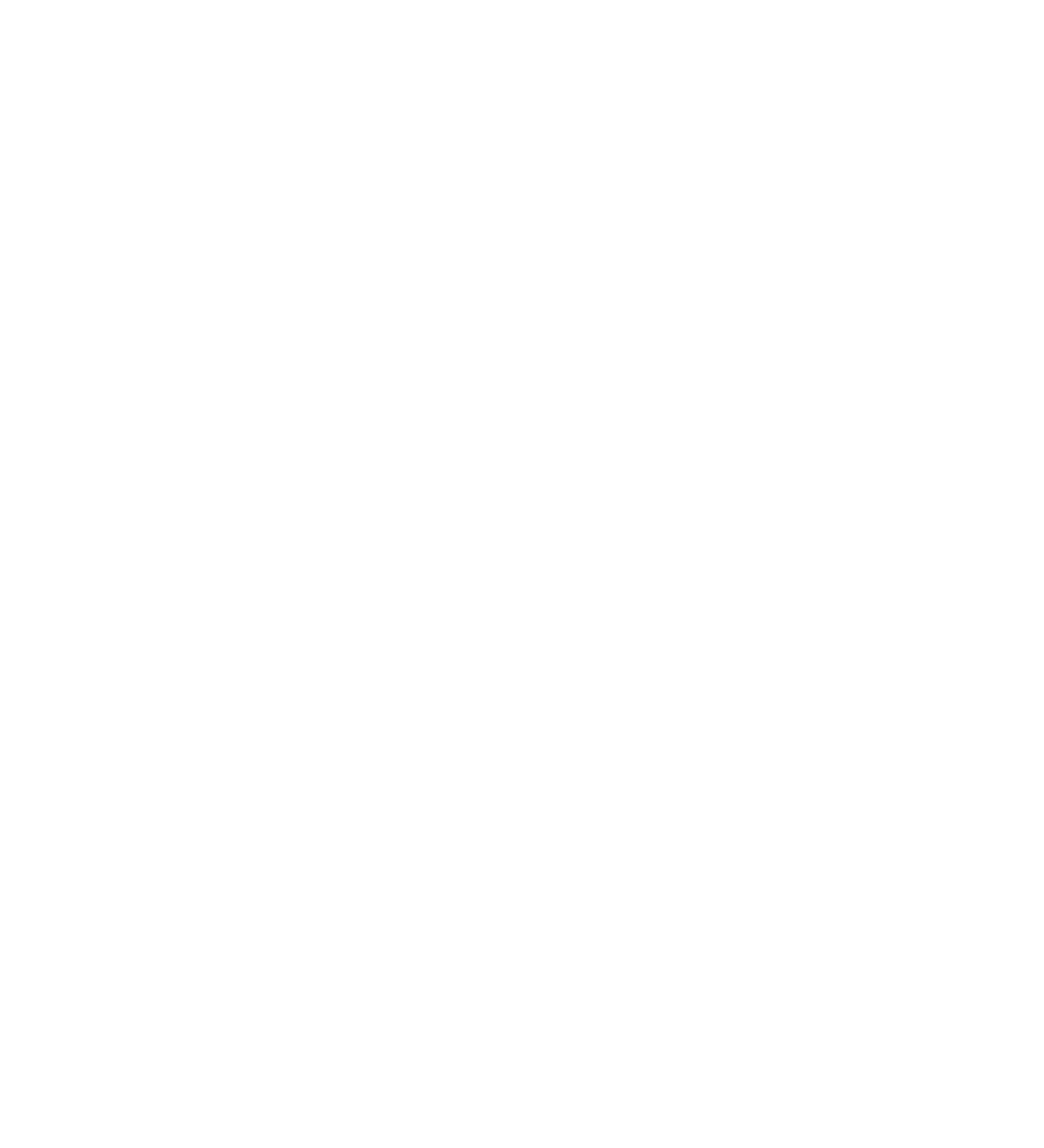 EURL LARGHETTO LUTHERIE